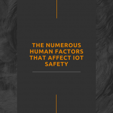 The Numerous Human Factors that Affect IoT Safety